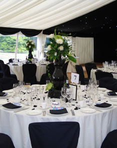 Vase hire party and venue decor hayleys bloomers kent goldfish bowl vase hire junglespirit Choice Image